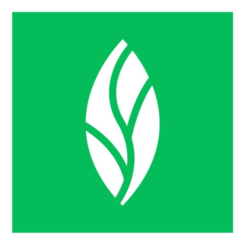 Mint-Dentistry-Logo